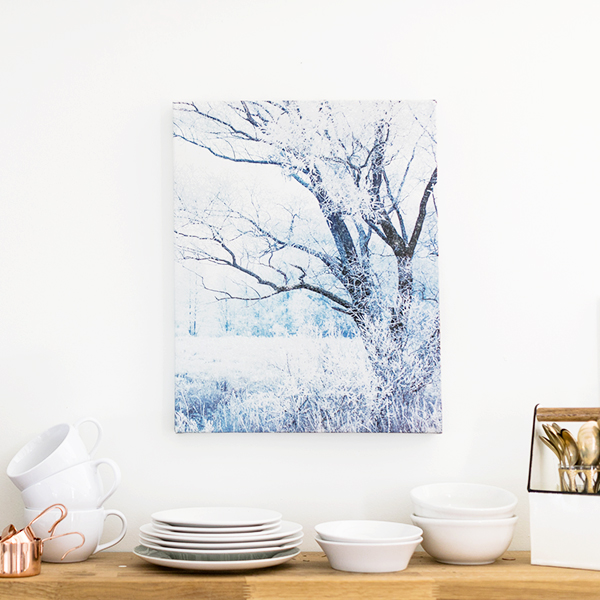 16x20 .75 Canvas Gallery Wraps | $38 ($115)
