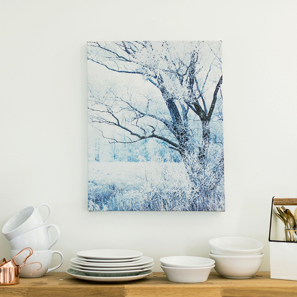"16x20 Canvas Gallery Wraps (.75"") 